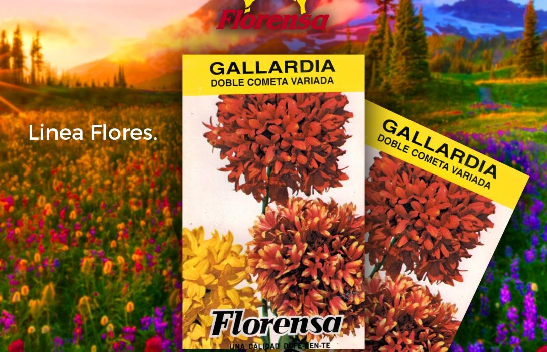 Gallardia