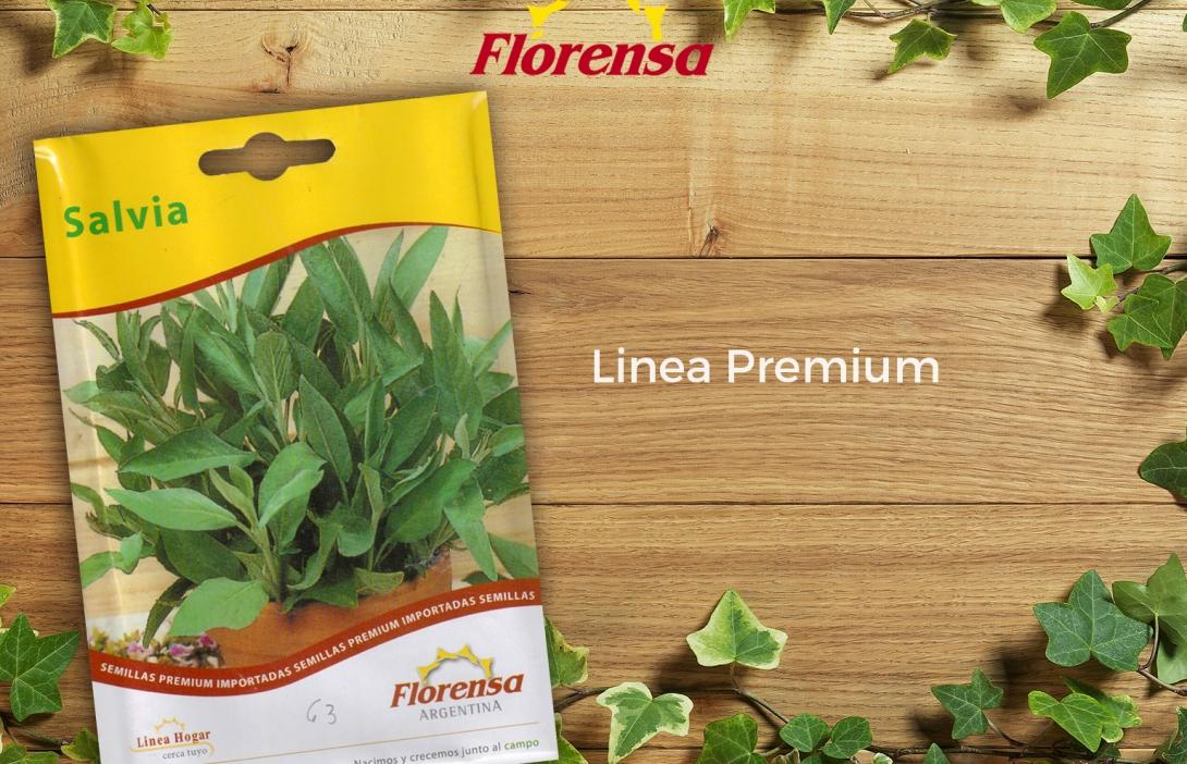 Salvia Premium