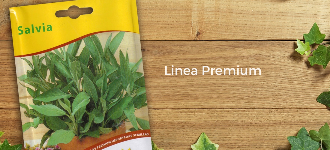 (Español) Salvia Premium